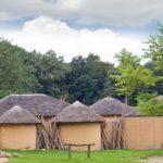 Afrikamuseum, buitenactiviteiten