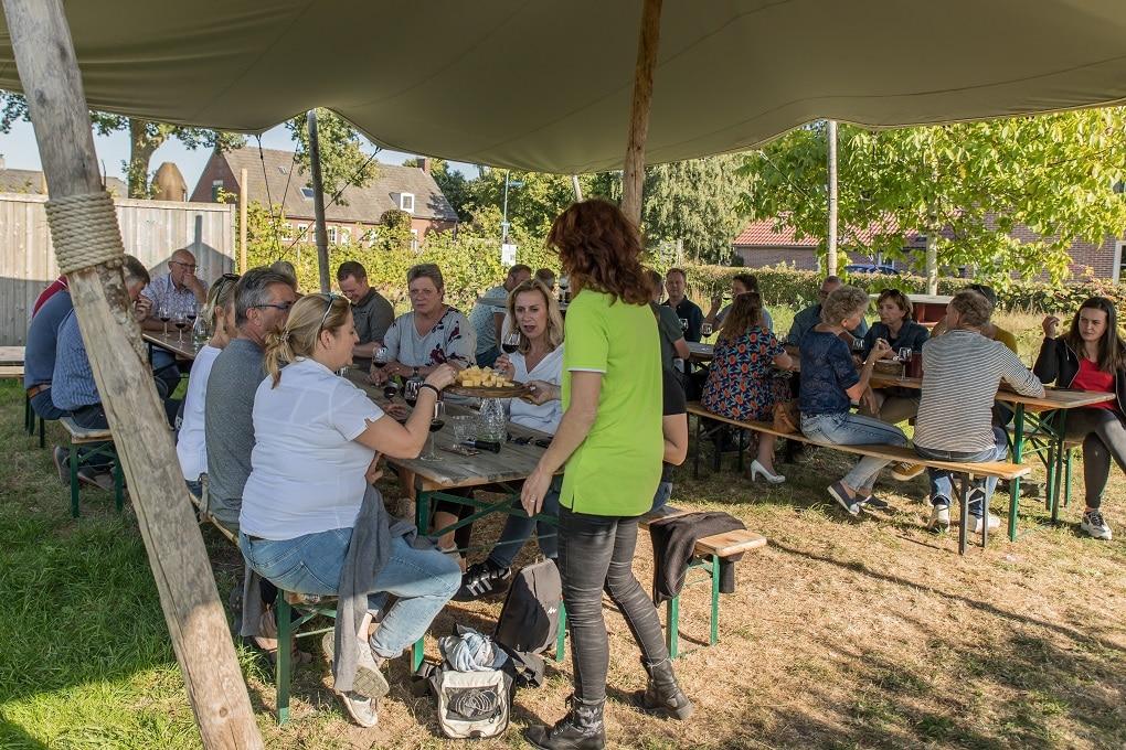 Rondleidingen en proeverijen bij Wijngaard de Plack Groesbeek