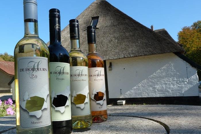 Wijngaard de Holdeurn, Berg en Dal