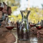 Wijnproeverij bij Wijngaard de Plack